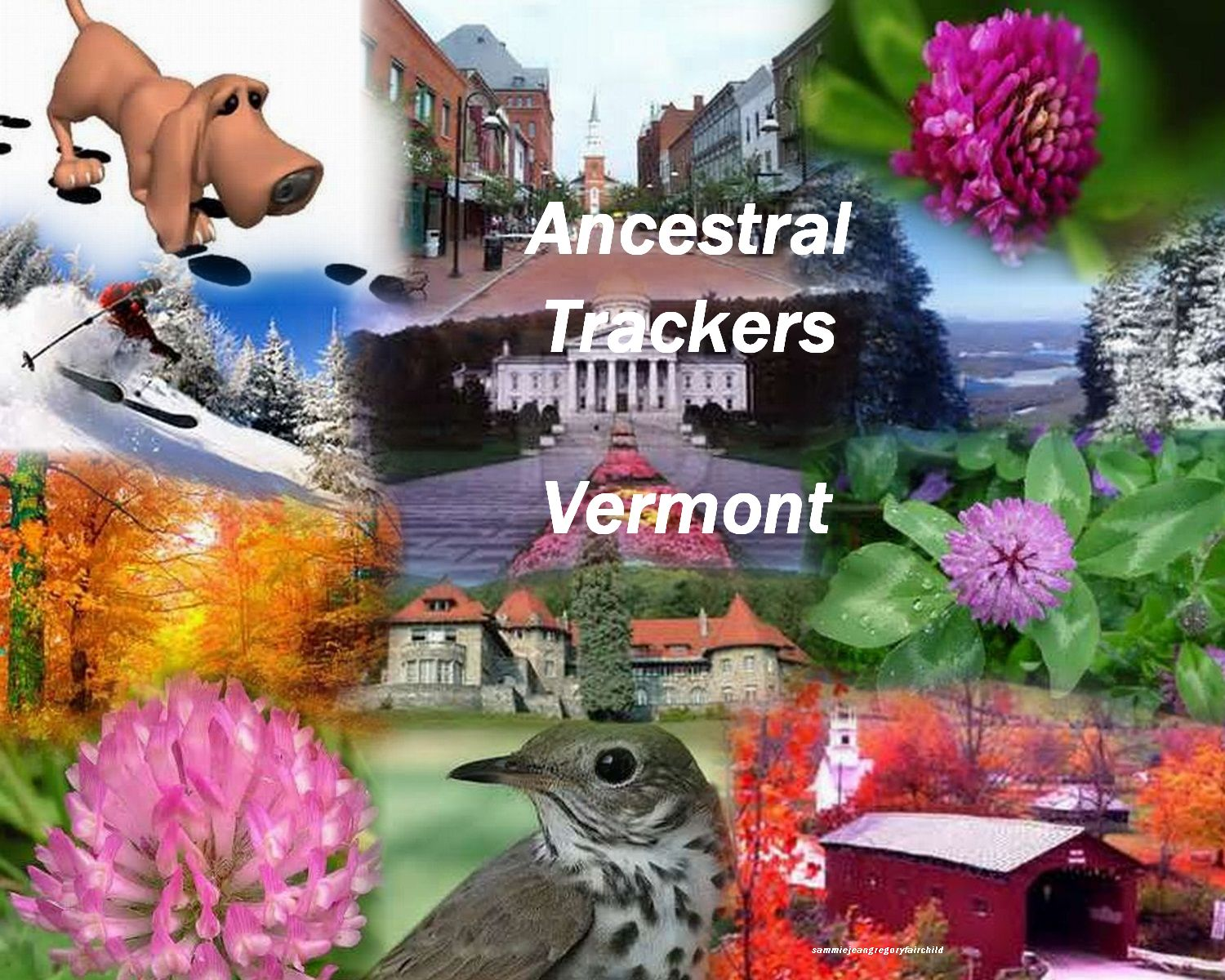 Vermont Ancestral Trackers home page.